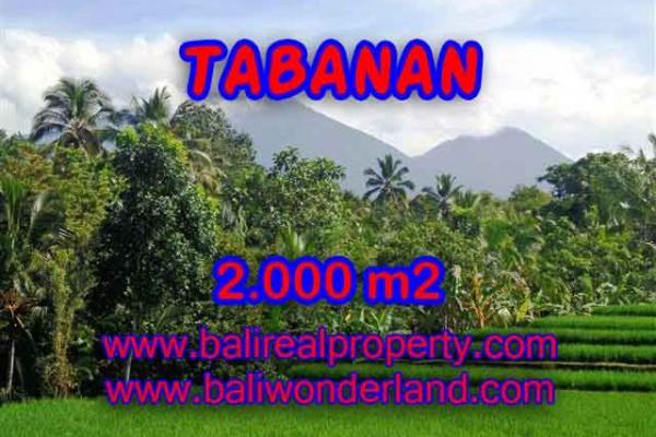 DIJUAL TANAH MURAH DI TABANAN TJTB121 – KESEMPATAN INVESTASI PROPERTY DI BALI