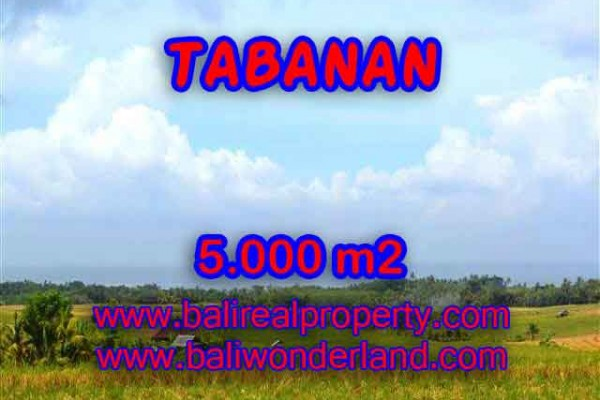 Jual Tanah murah di TABANAN TJTB124 – Kesempatan investasi property di Bali