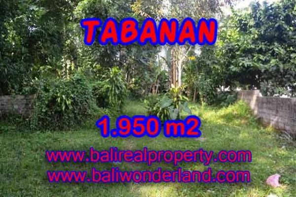 MURAH ! TANAH DI TABANAN BALI TJTB130 – INVESTASI PROPERTY DI BALI