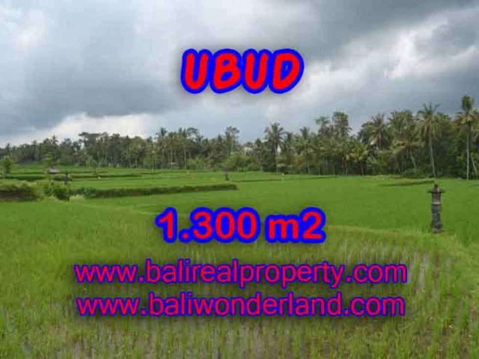Tanah di UBUD Bali Dijual murah TJUB394 – investasi property di Bali