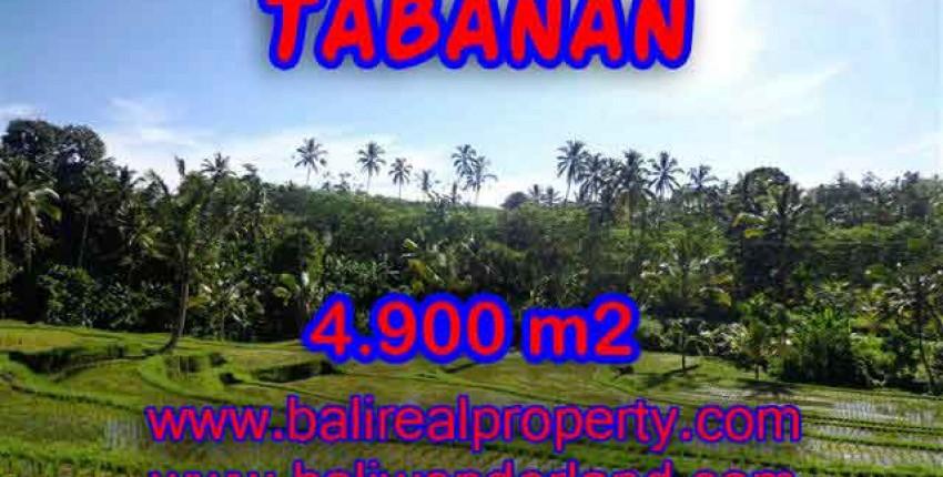 TANAH DI BALI DIJUAL, MURAH DI TABANAN TJTB111 – INVESTASI PROPERTY DI BALI