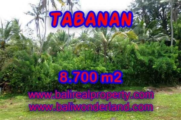 TANAH DI TABANAN MURAH DIJUAL TJTB115 – KESEMPATAN INVESTASI PROPERTY DI BALI