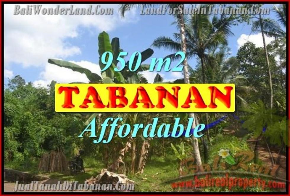 TANAH DIJUAL DI TABANAN BALI TJTB146