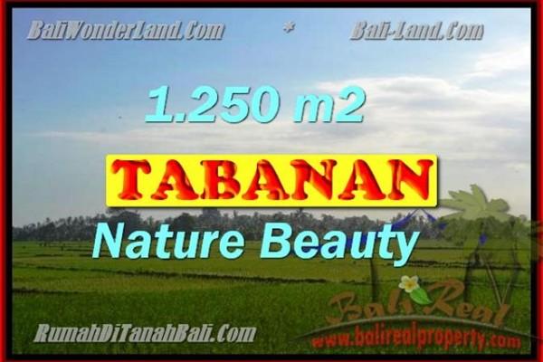 INVESTASI PROPERTI DI BALI – DIJUAL TANAH MURAH DI TABANAN TJTB148