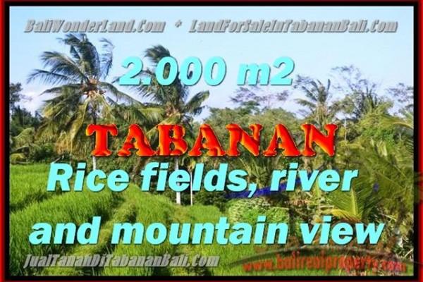 TANAH MURAH DI TABANAN TJTB147