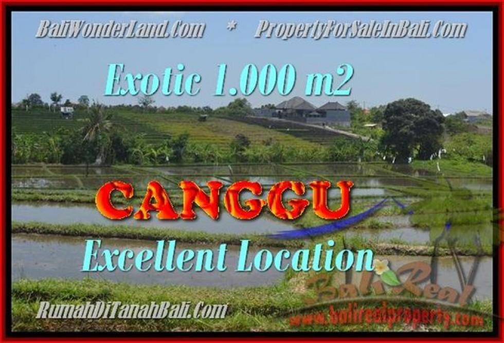 TANAH MURAH JUAL   CANGGU 10 Are View sawah dan laut linkungan villa