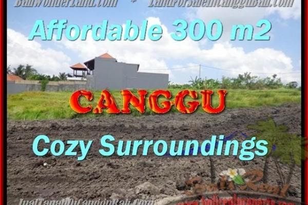 TANAH MURAH JUAL CANGGU 300 m2  View Sawah, sungai,lingkungan villa