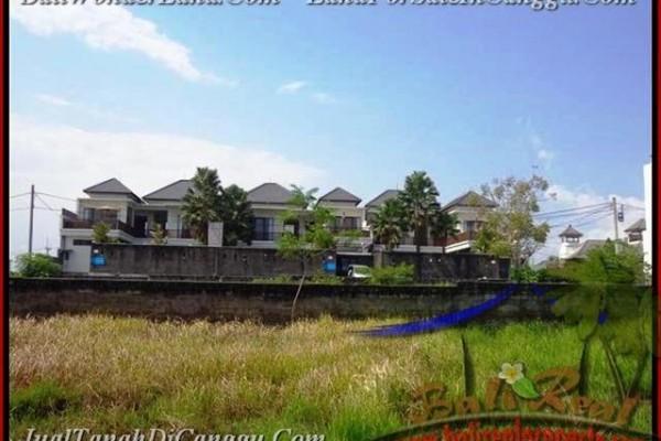 TANAH MURAH DIJUAL di CANGGU BALI TJCG160