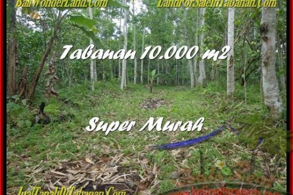 TANAH MURAH di TABANAN BALI 100 Are di Tabanan Penebel