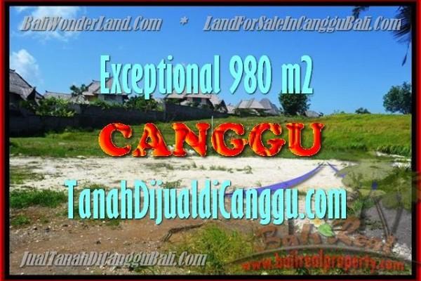 INVESTASI PROPERTI, TANAH MURAH DIJUAL di CANGGU TJCG152