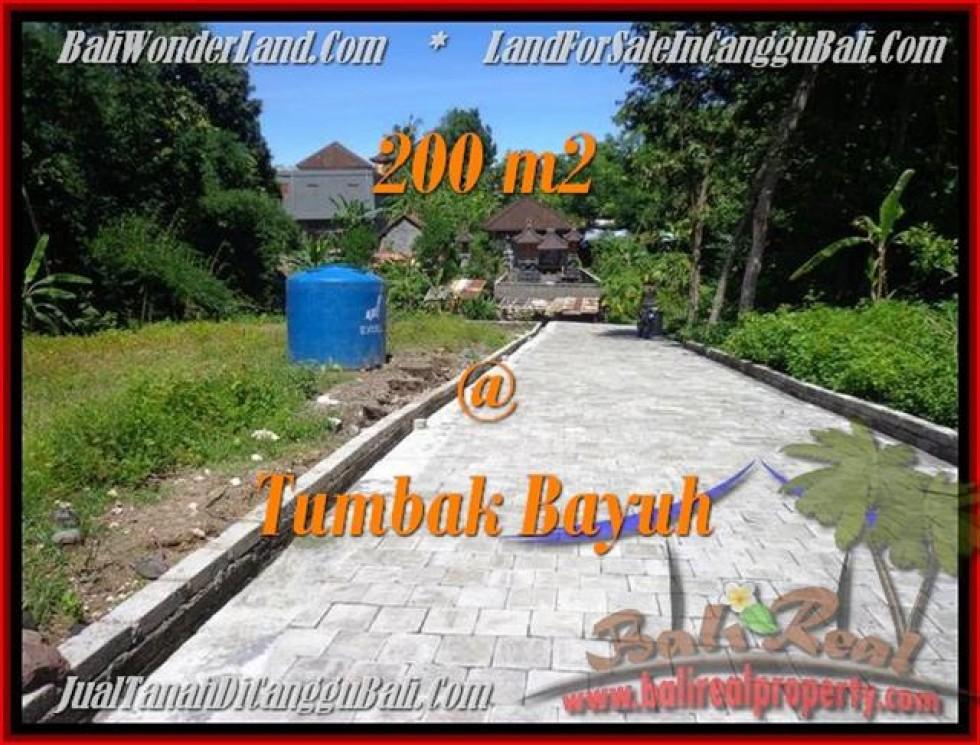 TANAH MURAH JUAL   CANGGU 200 m2  View kebun pemukiman