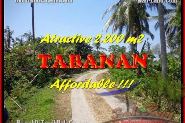 JUAL TANAH MURAH di TABANAN BALI 22 Are View kebun