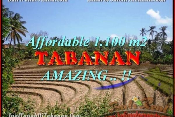 DIJUAL TANAH MURAH di TABANAN 1.100 m2 di Tabanan Selemadeg