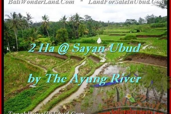 DIJUAL TANAH MURAH di UBUD BALI 20,000 m2 di Ubud Center