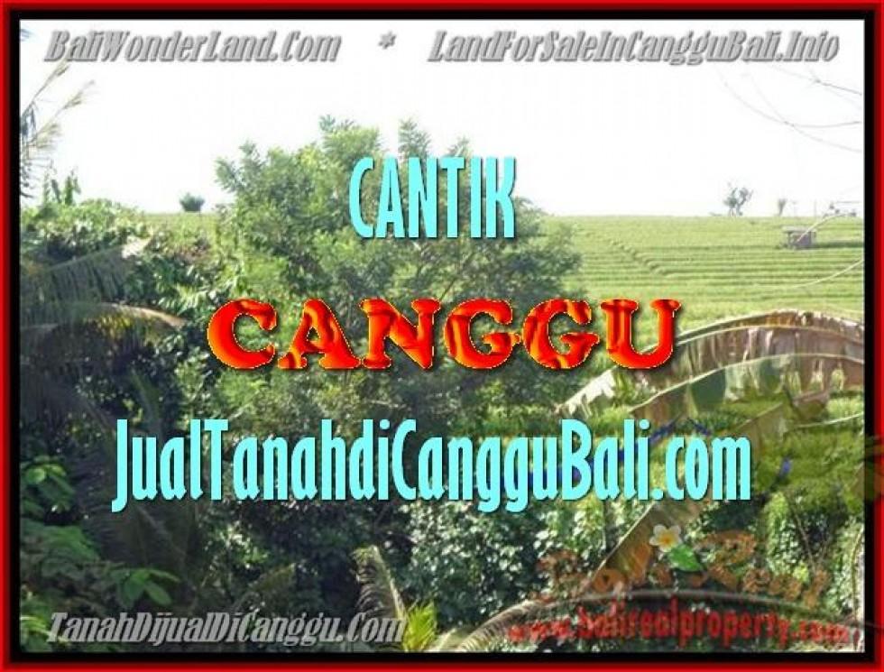TANAH MURAH DIJUAL di CANGGU BALI 1.700 m2 di Canggu Pererenan