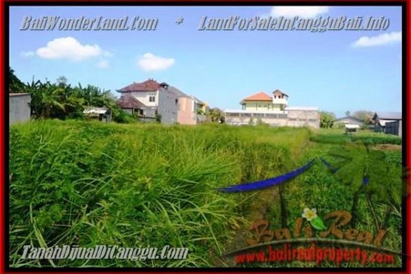 TANAH MURAH  di CANGGU BALI DIJUAL 770 m2  View Sawah