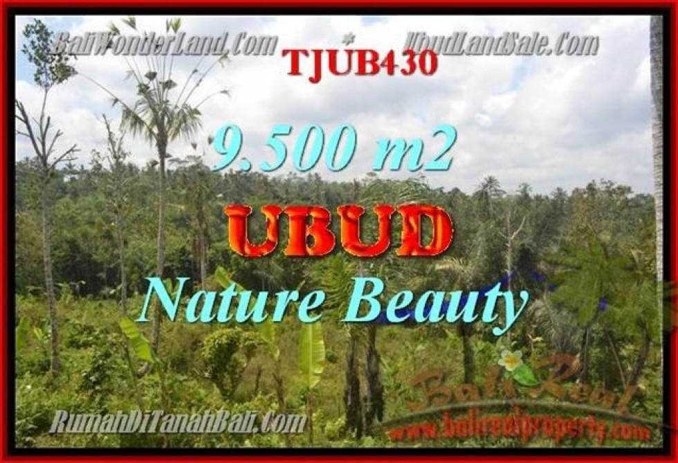 TANAH DIJUAL di UBUD 9,500 m2 di Ubud Payangan