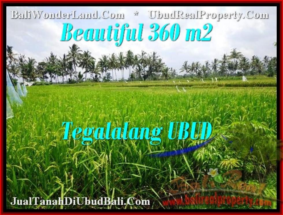 DIJUAL TANAH MURAH di UBUD Untuk INVESTASI TJUB482