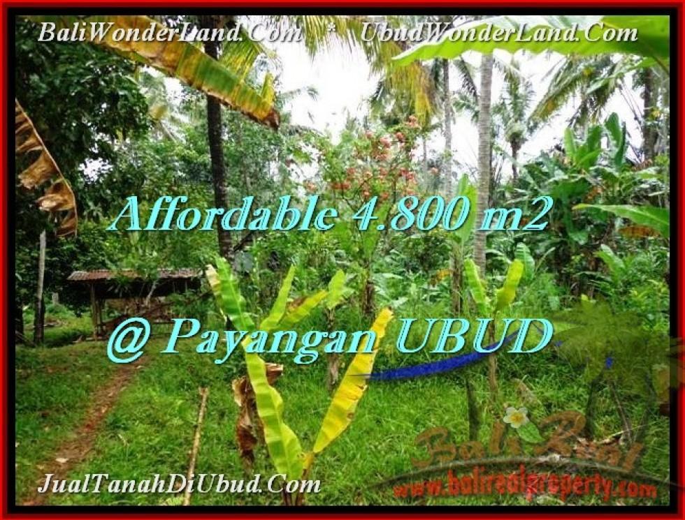 JUAL MURAH TANAH di UBUD 4,800 m2 di Ubud Payangan