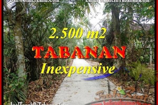 DIJUAL TANAH di TABANAN BALI 2,500 m2 di Tabanan Selemadeg