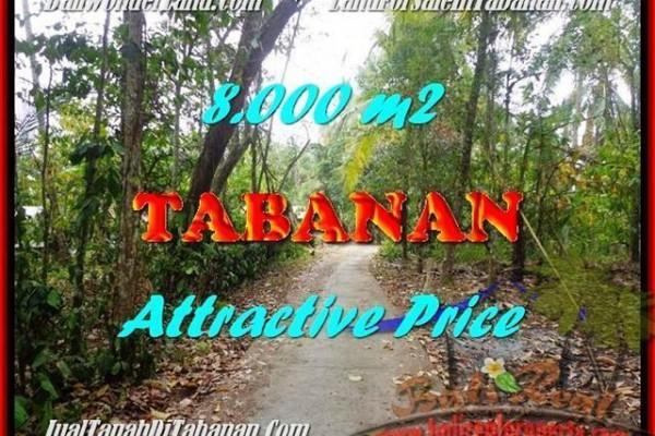 TANAH MURAH di TABANAN BALI TJTB161