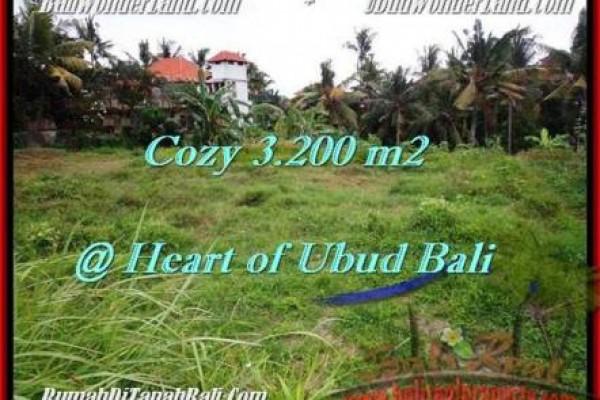 TANAH DIJUAL MURAH di UBUD 32 Are di Sentral Ubud