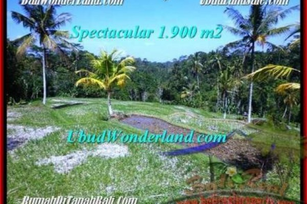 TANAH MURAH di UBUD BALI 1,900 m2 di Ubud Tegalalang