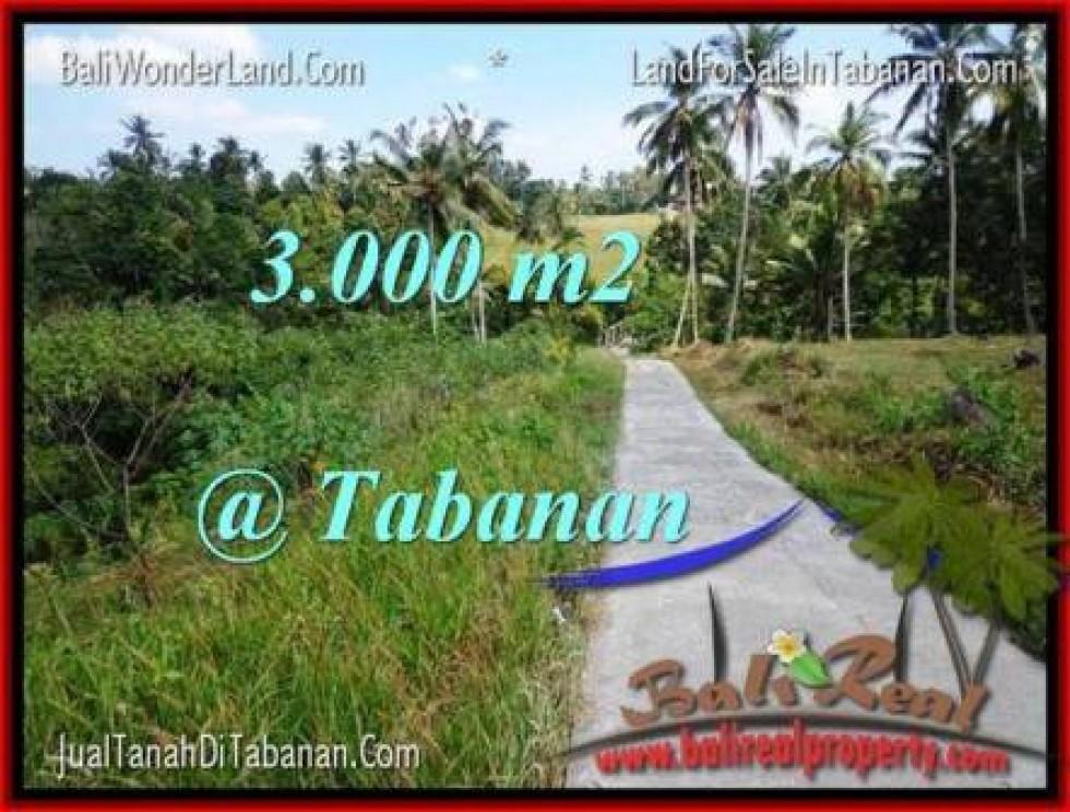 JUAL TANAH MURAH di TABANAN BALI 3,000 m2  View Sawah dan Sungai