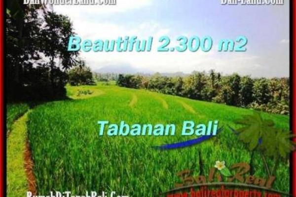 DIJUAL TANAH di TABANAN BALI Untuk INVESTASI TJTB209