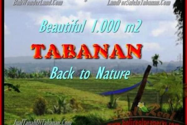 DIJUAL TANAH di TABANAN BALI 1.000 m2 di Tabanan Selemadeg