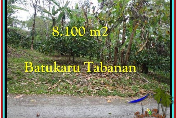 DIJUAL TANAH di TABANAN 81 Are di Tabanan Penebel