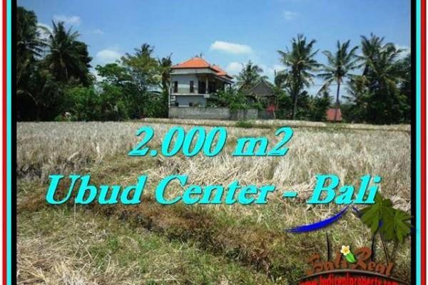 TANAH MURAH JUAL di UBUD BALI 20 Are View Sawah, Link. Villa