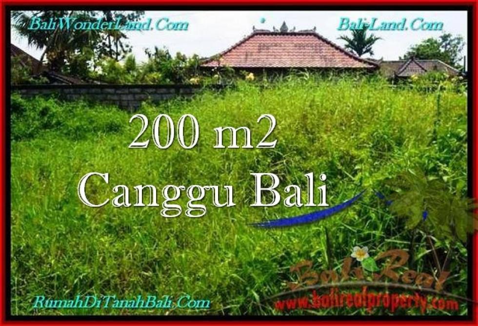 TANAH DIJUAL di CANGGU BALI 200 m2  Lingkungan villa