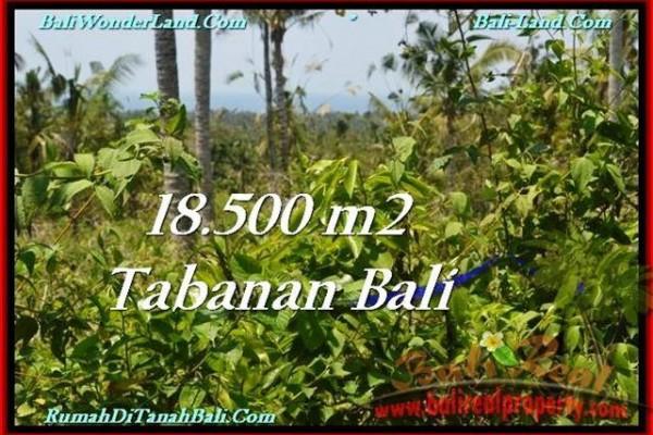 TANAH MURAH JUAL di TABANAN BALI 185 Are View Laut dan Kebun