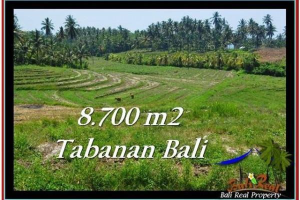 JUAL TANAH MURAH di TABANAN BALI TJTB233