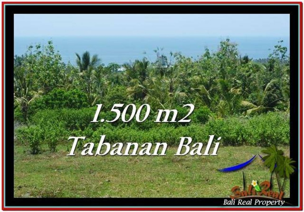 TANAH DIJUAL MURAH di TABANAN 1,500 m2 di Tabanan Selemadeg