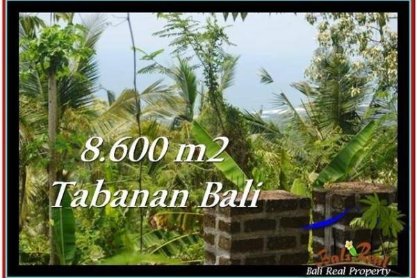 JUAL TANAH MURAH di TABANAN 86 Are view laut, hutan lindung, kebun