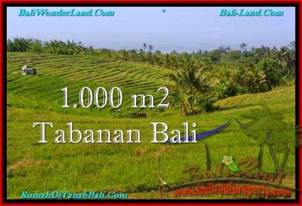 JUAL TANAH MURAH di TABANAN BALI 1,000 m2 di Tabanan Selemadeg