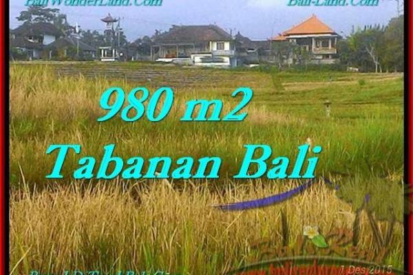 JUAL TANAH MURAH di TABANAN BALI 980 m2  View Sawah dan Laut