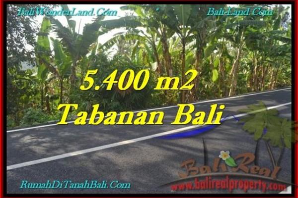 JUAL TANAH MURAH di TABANAN BALI 5,400 m2 di Tabanan Selemadeg