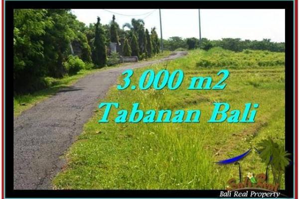 TANAH MURAH JUAL di TABANAN BALI 30 Are View sawah, sungai dan laut