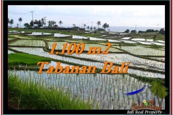 TANAH DIJUAL MURAH di TABANAN 1,100 m2 di Tabanan Selemadeg