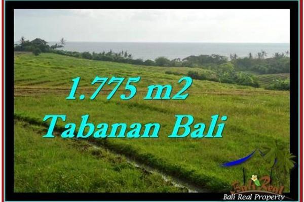 JUAL TANAH MURAH di TABANAN 1,775 m2  View sawah, laut dan gunung