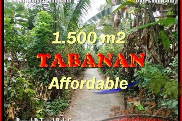 TANAH MURAH DIJUAL di TABANAN BALI 30 Are di Tabanan Selemadeg