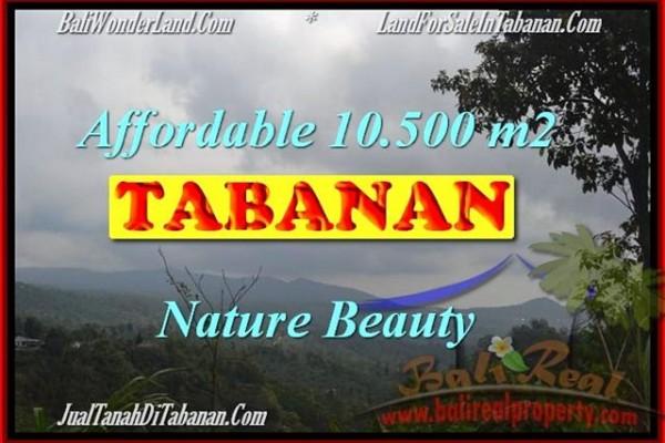 TANAH MURAH JUAL di TABANAN BALI 105 Are View gunung dan kebun