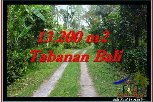 JUAL TANAH MURAH di TABANAN 132 Are di Tabanan Selemadeg