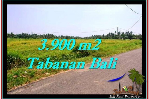 TANAH DIJUAL MURAH di TABANAN 3,900 m2 di Tabanan Selemadeg