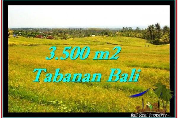 TANAH DIJUAL MURAH di TABANAN 3,500 m2 di Tabanan Selemadeg