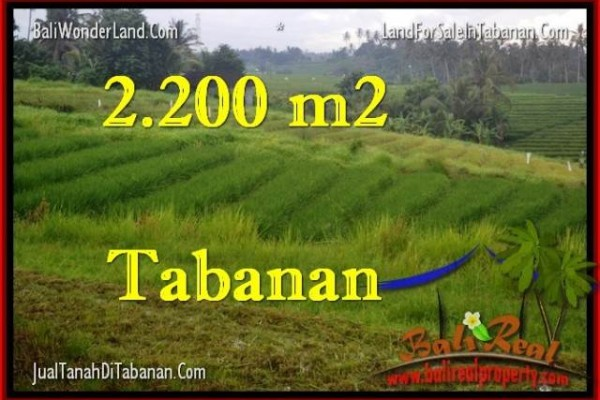 TANAH MURAH JUAL di TABANAN BALI 22 Are View Laut dan sawah