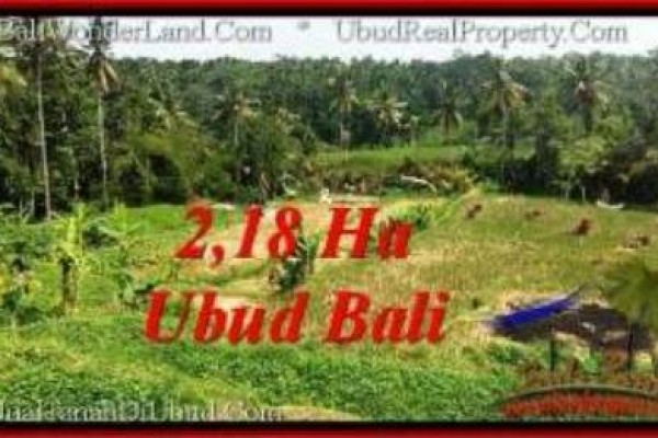 TANAH DIJUAL di UBUD BALI untuk hotel TJUB546